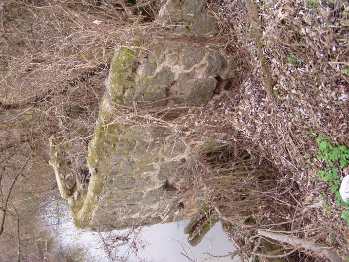 Залишки млина в с. Лебедівка, Кам'янського району
